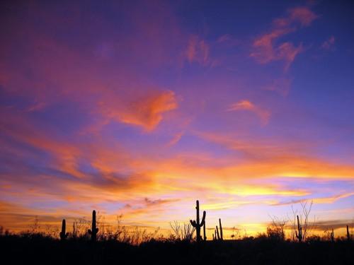 Scottsdale-Sunset